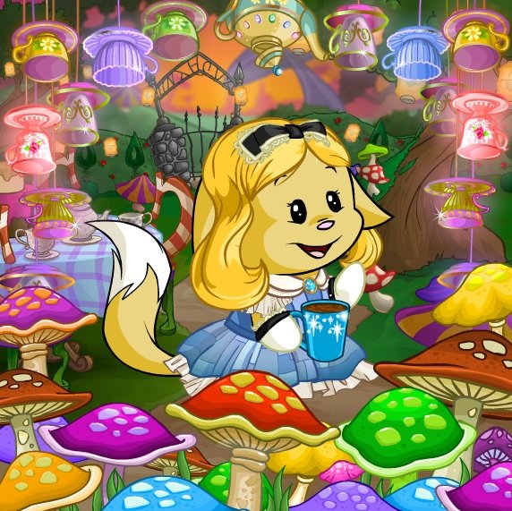 Enabling Flash for Neopets - The Daily Neopets