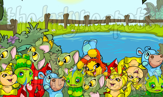 Petpet Park | The Daily Neopets